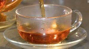 Le rooibos bio , des antioxydants plein la tasse
